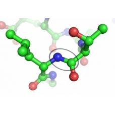 Виды пептидов и их эффект>